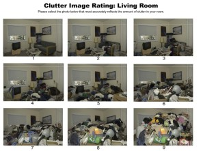 Clutter Scale - Click to Enlarge http://208.88.128.33/hoarding/